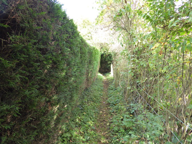 Footpath in Bushmoor