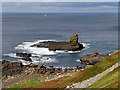 C9545 : Causeway Coast, Sea Gull Isle by David Dixon