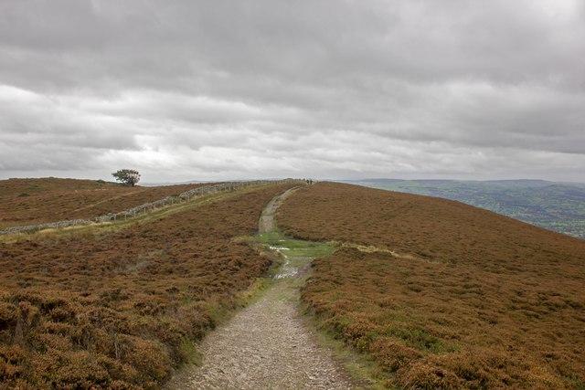 Offa's Dyke Path near Moel Llys-y-coed