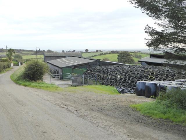 Farmyard at Edennagully