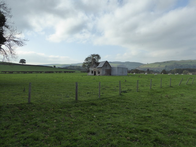 Derelict cottage in the field