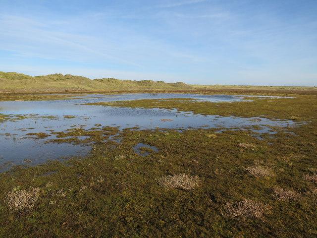 Tidal area, Blakeney Point