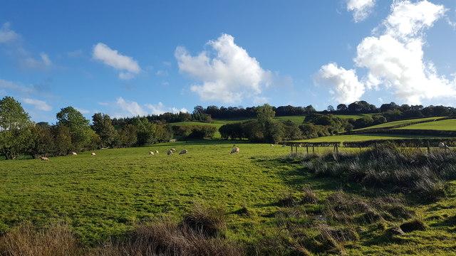 Field Opposite Talgarth Manor