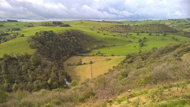 View across Manifold Valley above Cheshire Wood