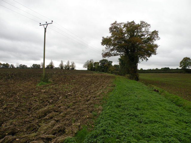 Footpath to Camps End