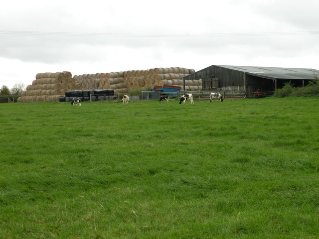 Little Biggs farm