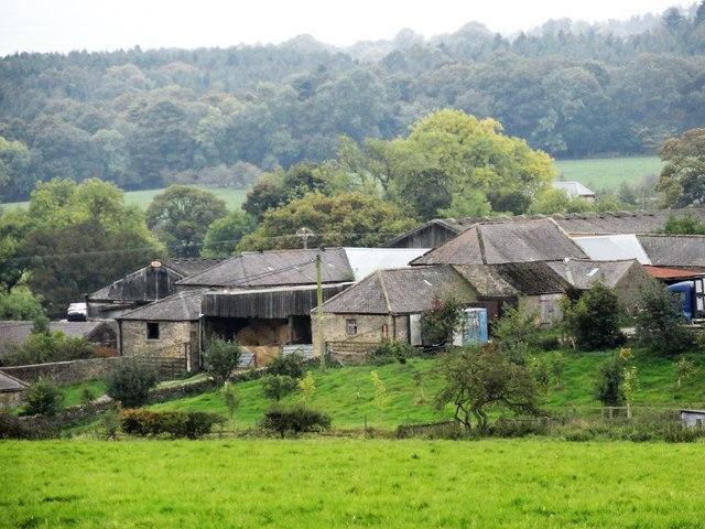 Newlands Haugh farm