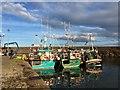 NT6879 : Three Fishing Boats at the Old Harbour Dunbar : Week 42