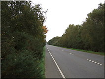 TF6731 : Looking north on the A149 by JThomas