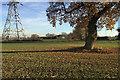 SP2574 : Edge of a field near Chase Farm by Robin Stott