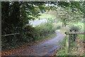 ST2389 : Lane to Llan-danglws Farm by M J Roscoe