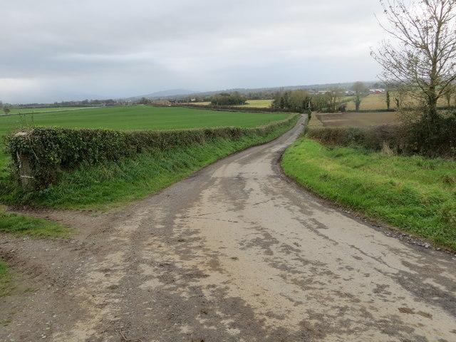 Road to Golden from Garraun