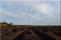 N5126 : Turf bog at Mount Lucas Wind Farm Co. Offaly by Kenneth Gallery Smyth