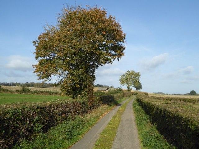No through road in Bushley