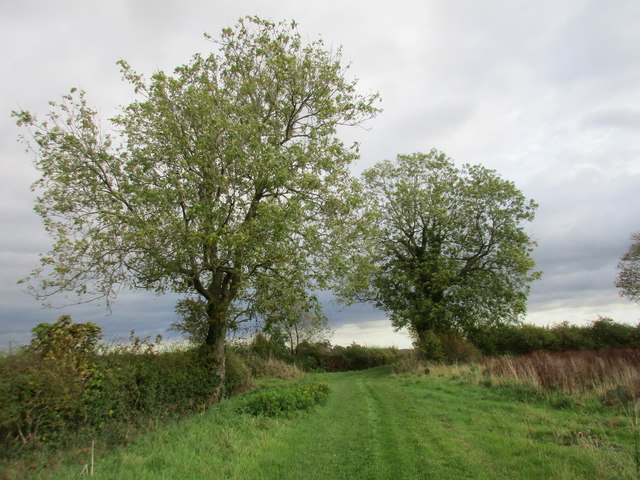 Bridleway (Old Lane) to the A169