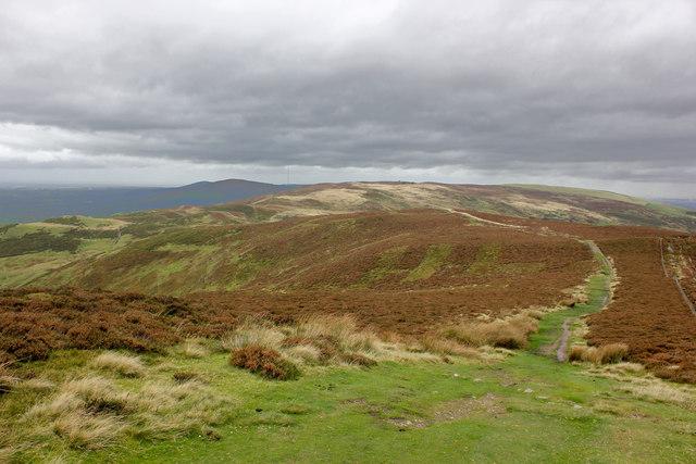 Offa's Dyke Path towards Moel Dywyll