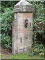 SJ3163 : Birk's Lodge gatepost and a bench mark by John S Turner