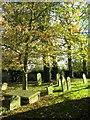 NZ2215 : In a country churchyard by Gordon Hatton
