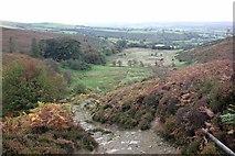 SJ1663 : The Clwydian Way by Jeff Buck