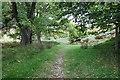 SJ1663 : The Clwydian Way towards Moel Famau by Jeff Buck