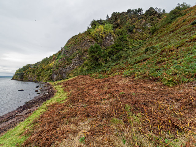 Shoreline at Craigiehowe