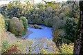 NT5833 : Tweed view upstream, Old Melrose by Jim Barton