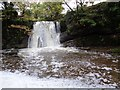 SD9163 : Janet's Foss by Ashley Dace