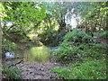 ST5707 : Ford and footbridge near Melbury Osmond by Jonathan Thacker