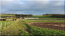 NS2006 : Farmland at Lands of Turnberry by Billy McCrorie