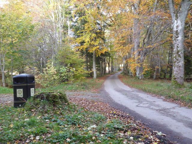 Litter bin, Torphin Wood