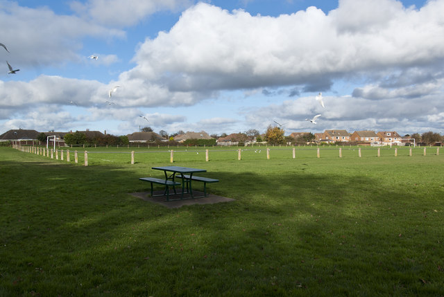 A playing field at Ridgewood Park