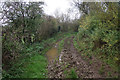 SP3326 : Muddy track in the Glyme valley by Bill Boaden