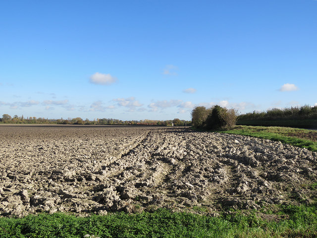 Autumn ploughland in North Hertfordshire
