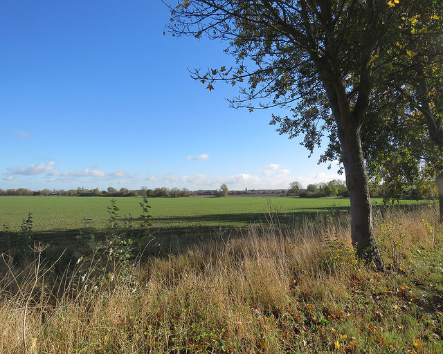 Between Hinxworth and Ashwell in late October