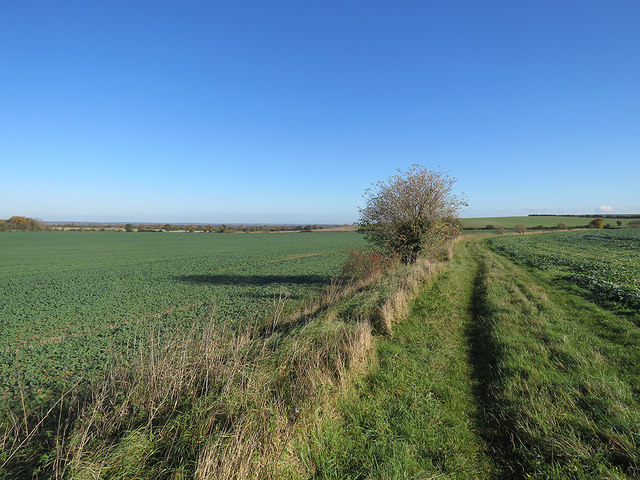 Path from Caldecote and a long view