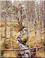 NH2523 : Woodland stream, by Loch an Eang by Craig Wallace