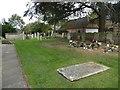 TL1698 : St Botolph, Longthorpe: churchyard (b) by Basher Eyre