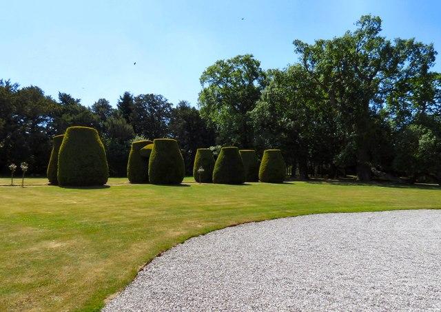 Box bushes at Bodrhyddan Hall