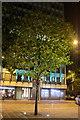 SJ8397 : Floodlit tree in Mount Street by Bob Harvey