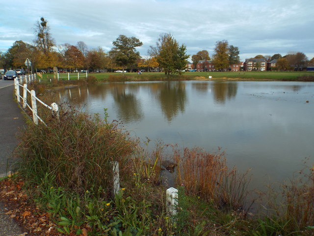 Pond on Shenfield Common, Brentwood