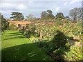 SE5158 : Beningbrough Hall Walled Garden by David Dixon