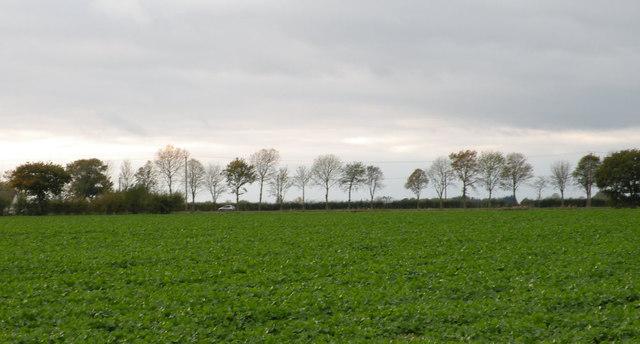 Skyline near Cambourne