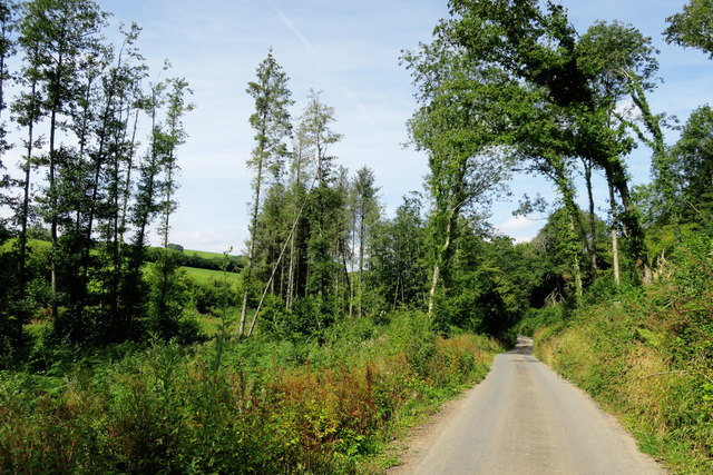The Road Through Clay Copse