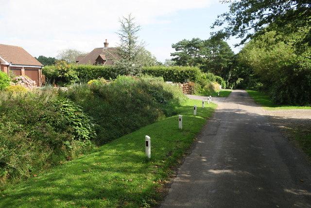 Houses along a Narrow Hilltop Road