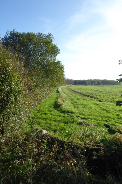 Field boundary beside the B1222