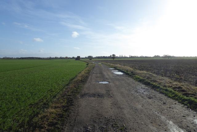 Ings Lane in autumnal sunshine