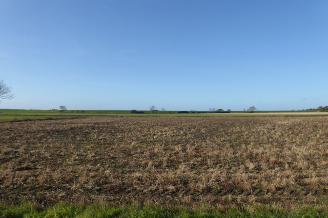 Empty field beside Ings Lane