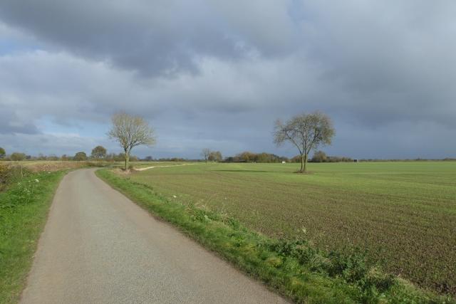 Marsh Lane near the Nesses
