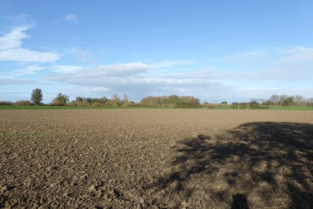 Empty field off Ings Lane