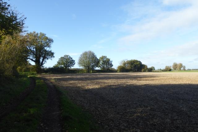 Bridleway north of Kelfield
